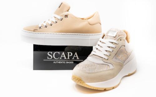 DSC01203 500x313 - Scapa