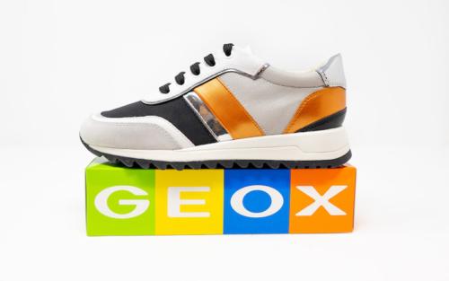 DSC01206 500x313 - Geox