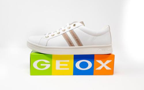 DSC01208 500x313 - Geox