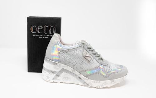 DSC01214 500x313 - Cetti