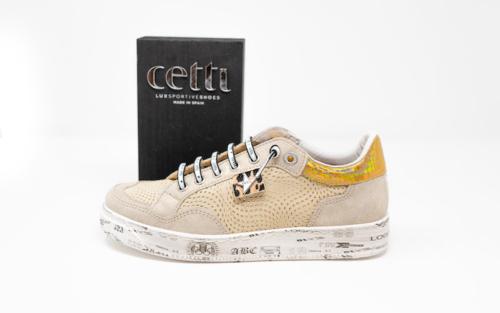 DSC01216 500x313 - Cetti
