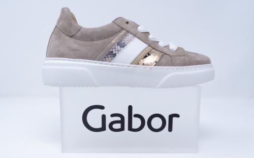 Chaussures Dethier 34 1 500x312 - Gabor